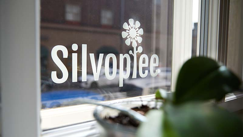 Silvoplee_logo_ikkunassa